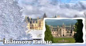 Loved ones Vacation Suggestions: Outdoor Activities at Biltmore Estate